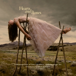 Jacket Image For: Hearts and Bones
