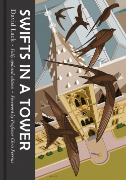 Jacket Image For: Swifts in a Tower